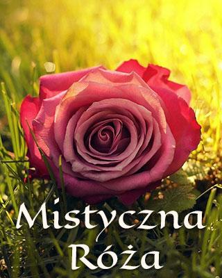 mistyczna róża - wykład i medytacja
